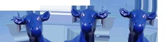 """Media Autohandel Magdeburg - KFZ-Ankauf und Verkauf, Einfahrt """"Blaue Kuh"""""""